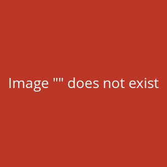 Derbystar Bundesliga Brillant APS Spielball 2020/21