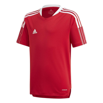 adidas Tiro 21 Trainingstrikot Kinder - GM7576